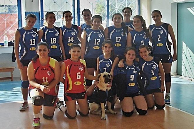saronikos volley 2015  678