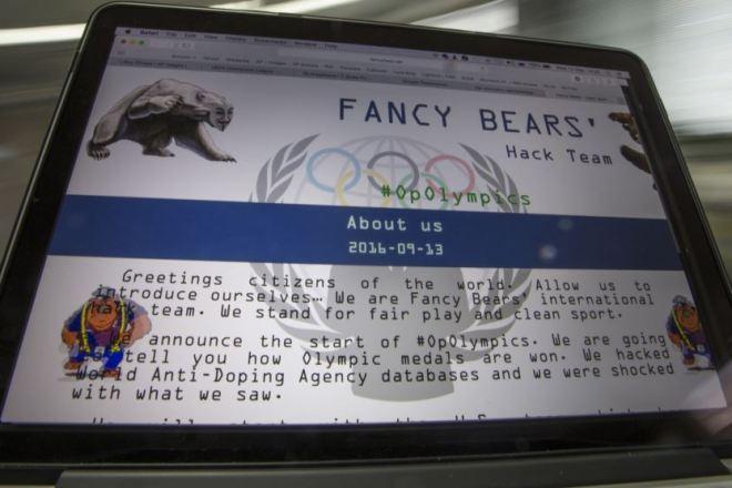 fancy_bears_site