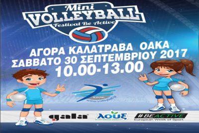Afisa_Mini_Volley_Festival2017_new