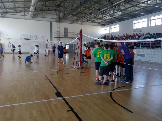 Mini volley για 8η σερί χρονιά στην Κερατέα