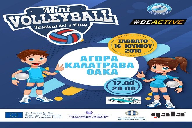mini_volleyball_oaka