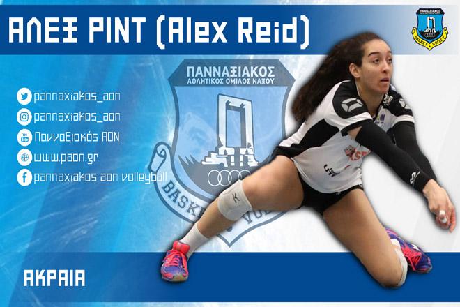 ALEX-REID