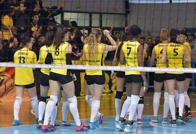 aris_volley